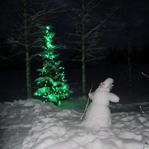 Joulua odotellessa.